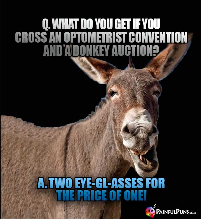 Q. What do you get if you cross an optometrist convention and a donkey auction? A. Two eye-gl-asses for the price of one!