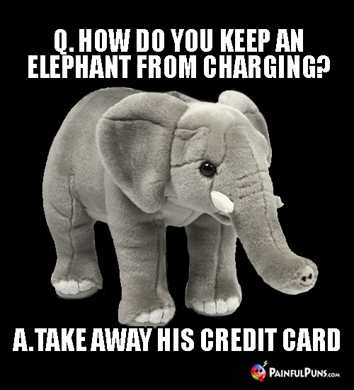 Q. How do you keep an elephant from charging? A. Take away his credit card.