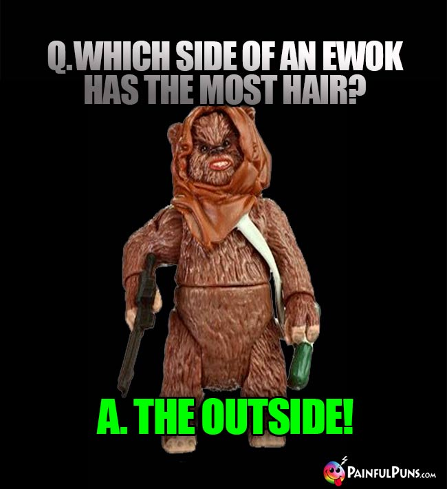 Q. Which side of an Ewok has teh most hair? A. The Outside!