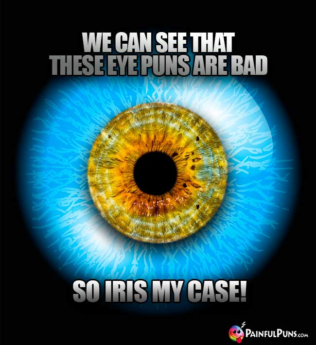 We can see that these eye puns are bad, so iris my case!