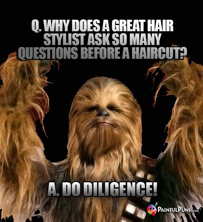 Q. Why does a great hair stylist ask so many question before a haircut?
