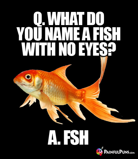 Q. What do you name a fish with no eyes? A. FSH
