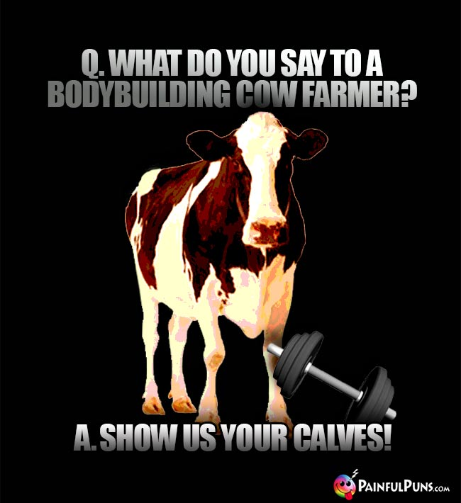 Q. What do you say to a bodybuilding cow farmer? A. Show us your calves!