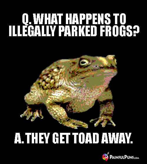 Punny Riddle: Q. What happens to illegally parked frogs? A. They get toad away.