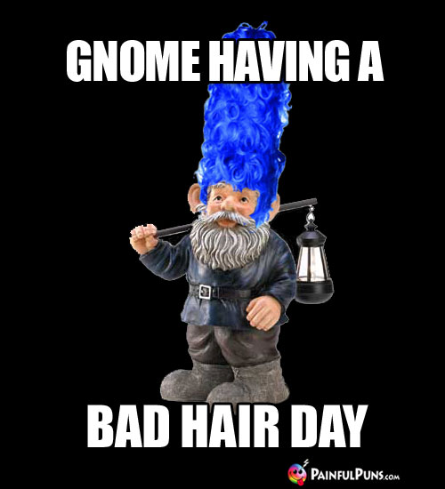 Gnome having a bad hair day