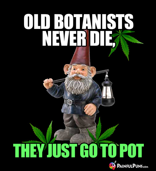 Gnome Meme: Old Botanists Never Die, They Just Go to Pot