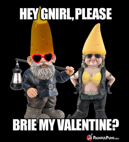 Cheesy Pick-Up Line: Hey Gnirl, please brie my Valentine?