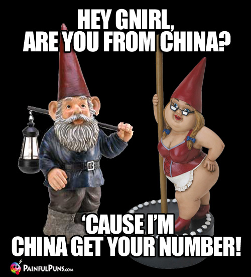 Hey Gnirl, are you from China? 'Cause I'm China get your number!