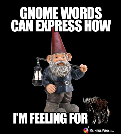 Gnome Words Can Express How I'm Feeling for (Gnu)