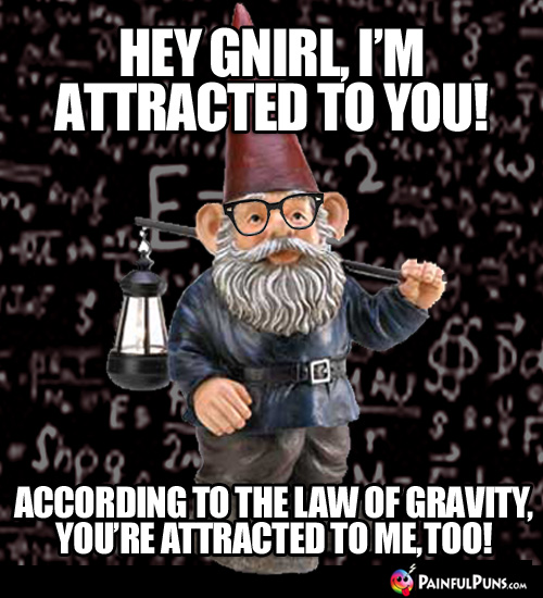 Hey Gnirl, I'm attracted to you! According to the law of gravity, you're attracted to me, too!