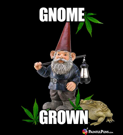 Gnome & Toad with Pot Leaves: Gnome Grown