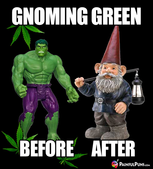 Hulk & Gnome Pot Humor: Gnoming Green, Before & After
