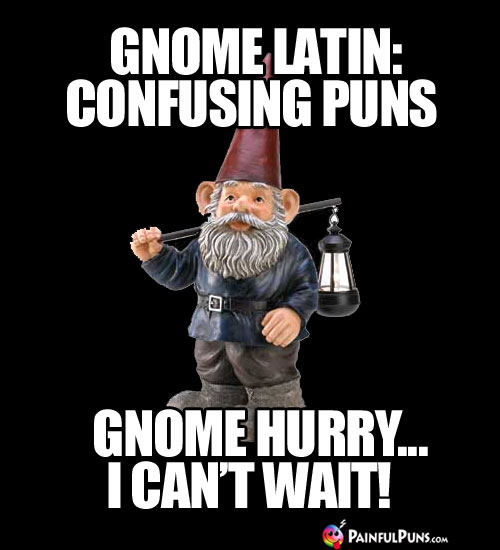 Gnome Latin: Confusing Puns, Gnome hurry...I can't wait!