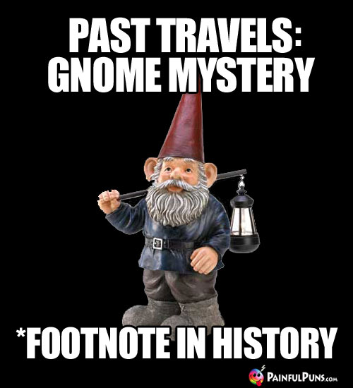 Past Travels: Gnome Mystery. *Footnote in history