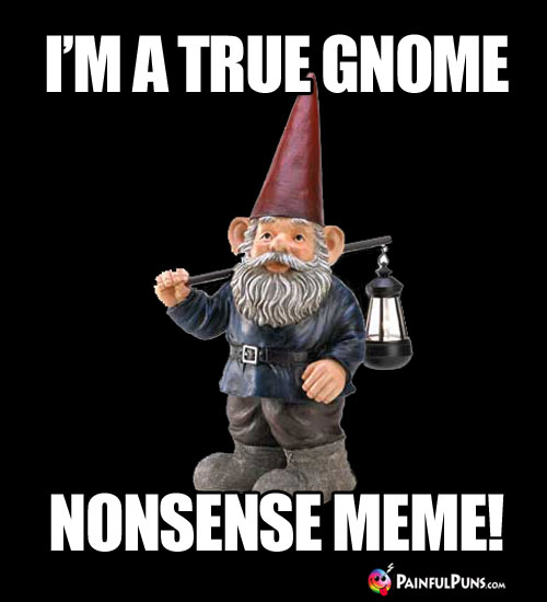 I'm a true gnome nonsense meme