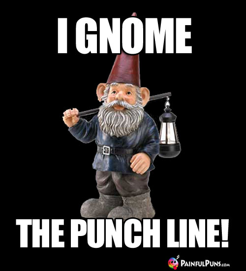 I Gnome The Punch Line!