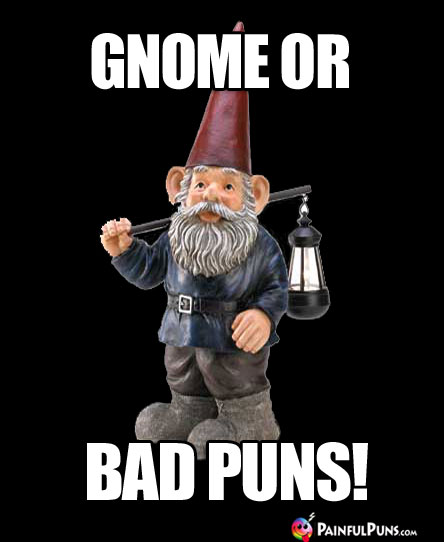 Gnome or Bad Puns!