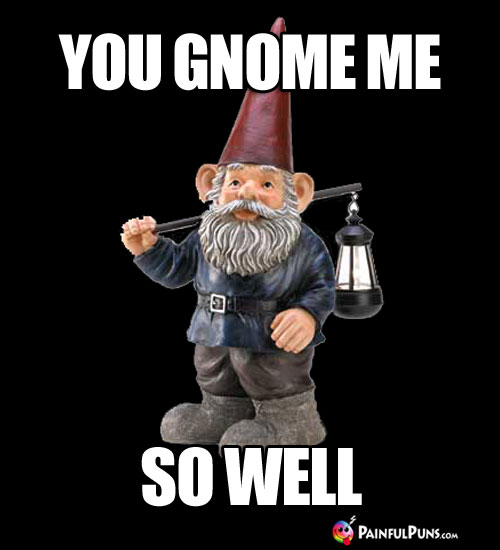You Gnome Me So Well