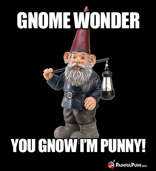 Gnome wonder you gnow I'm punny!
