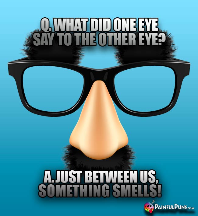 Q. What did one eye say to the other eye? A. Just between us, something smells!