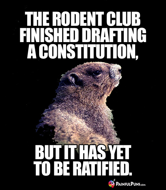 Animal Pun: The rodent club finished drafting a constitution, but it has yet to be ratified.