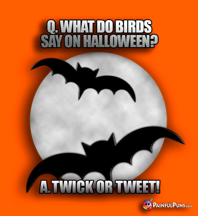 Q. What do birds say on Halloween? A. Twick or Tweet!