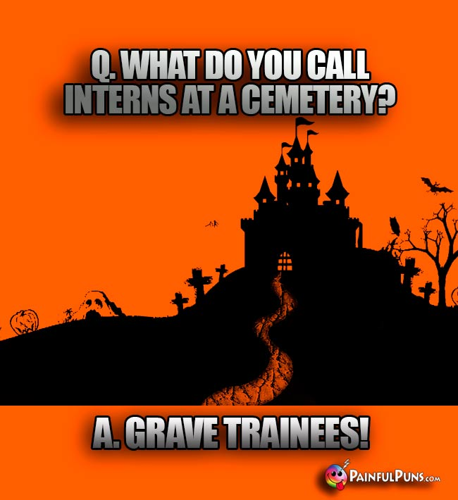 Q. What do you call interns at a cemetery? A. Grave trainees!