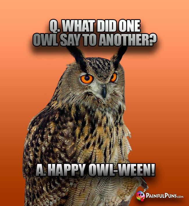 Q. Wht did one owl say to another? A. Happy Owl-ween!