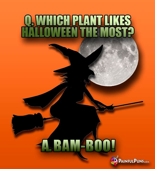 Q. Which plant likes Halloween the most? A. Bam-Boo!