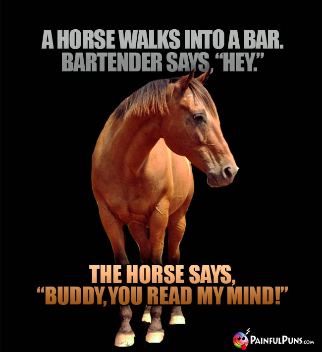 "A horse walks into a bar. Bartender says, ""Hey."" The horse says, ""Buddy, you read my mind1"""