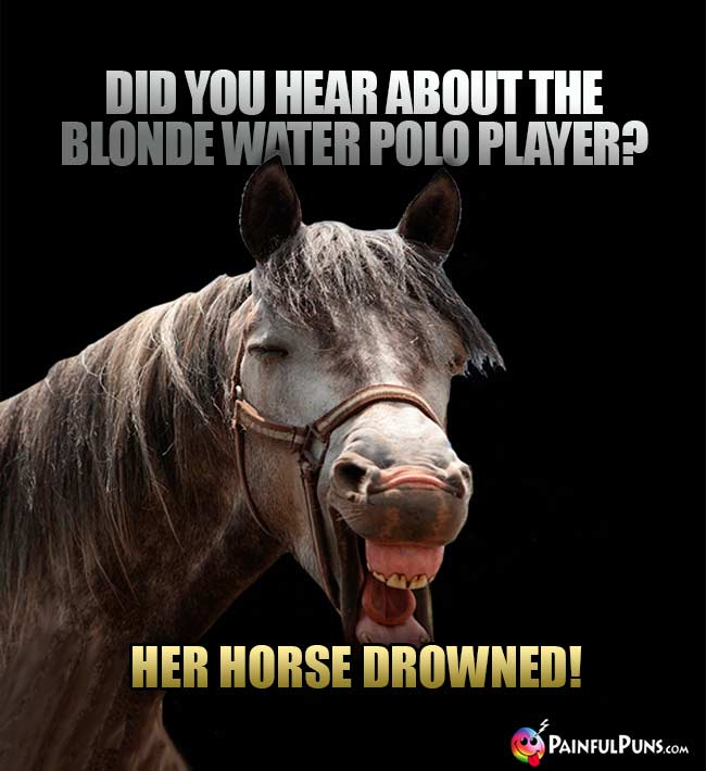 Did you hear about the blonde water polo player? Her horse drowned!