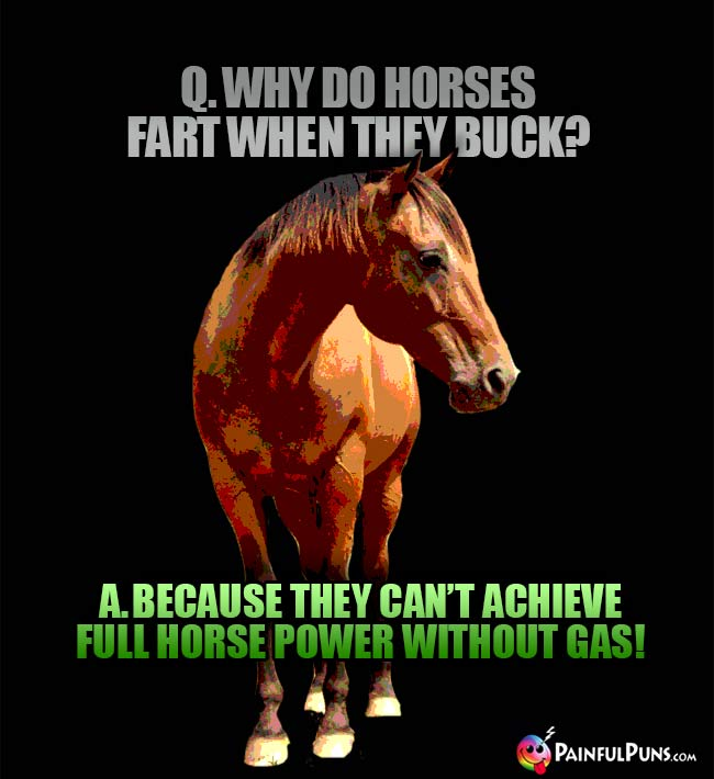 Q. Why do horses fart when they buck? A. Because they can't acheive full horse power without gas!
