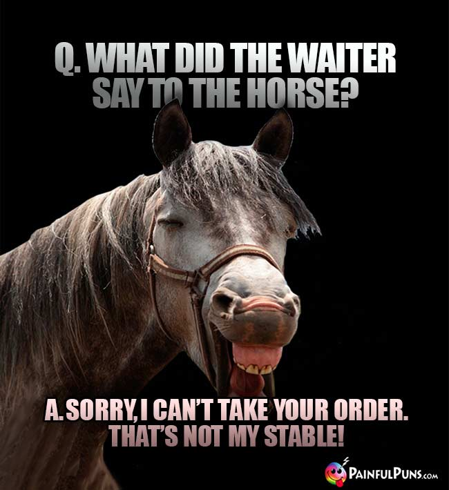 Q. What did the waiter say to the horse? A. Sorry, I can't take your order. That's not my stable!
