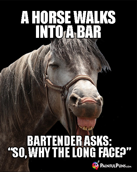 "A horse walks into a bar. Bartender asks: ""So, why the long face?"""