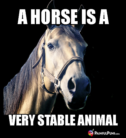 Fun FarmSaying: A Horse is a Very Stable Animal.