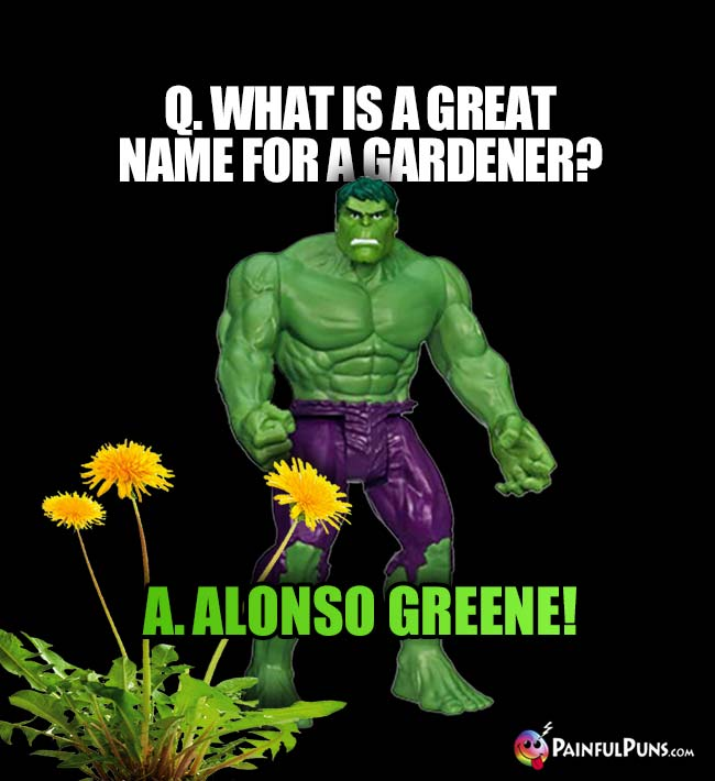 Hulk Asks: What is a great name for a gardener? A. Alonso Greene!