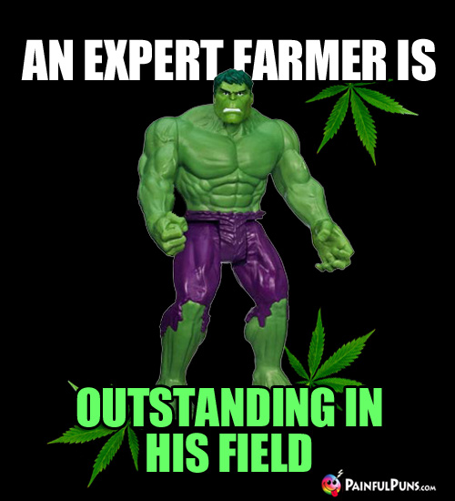 Farm Humor: An Expert Farmer is Outstanding in His Field