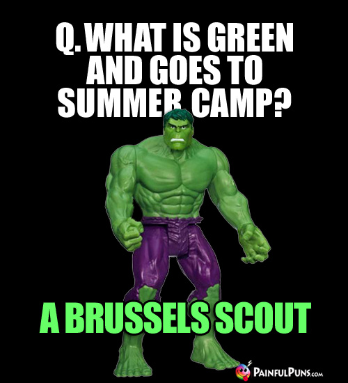 Q. What is green and goes to summer camp? A Brussels Scout