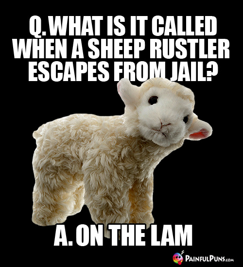 Sheep Jokes Ewe Puns Lamb Humor Painfulpunscom