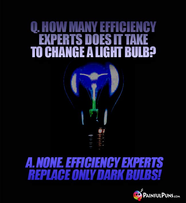Q. How many efficiency experts does it take to change a light bulb? A. None. Efficiency experts replace only dark bulbs!