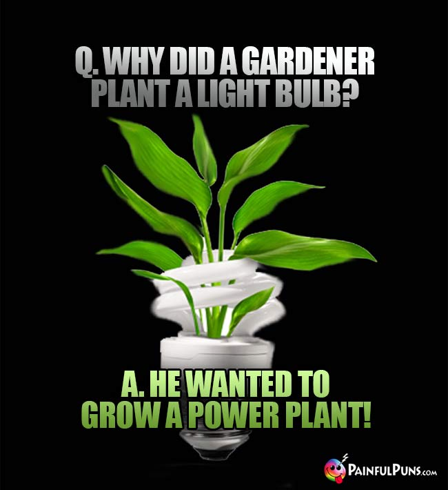 Q. why did a gardener plant a light bulb? A. He wanted to grow a power plant!