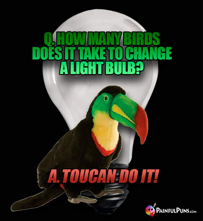 Q. How many birds does it take to change a light bulb? A. Toucan do it!
