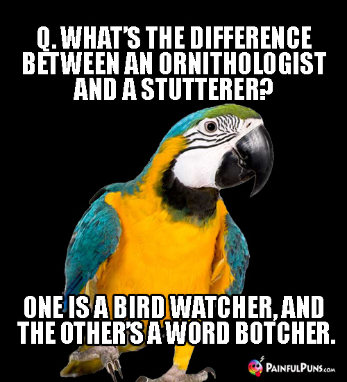 Q. What's the difference between an ornithologist and a stutterer? One is a bird watcher, and the other's a word botcher.