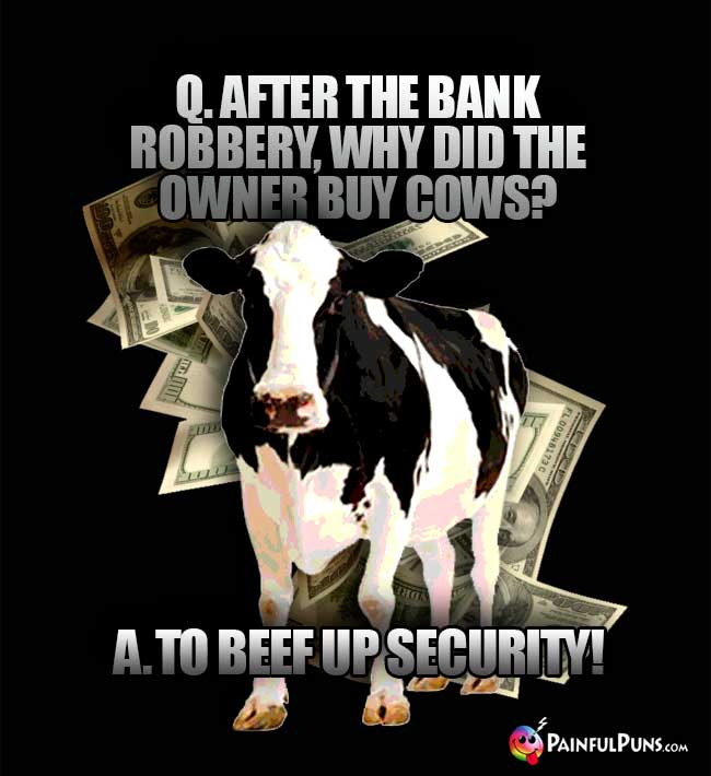 Q. After the bank robbery, why did the owner buy cows? A. To beef up security!