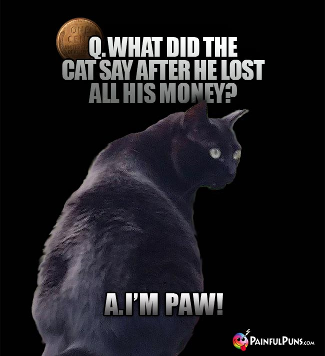 Q. What did the cat say after he lost all his money? A. I'm Paw!