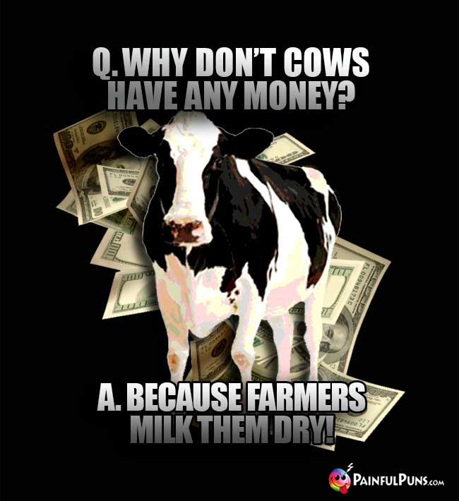 Q. Why don't cows have any money? A. Because farmers milk them dry!