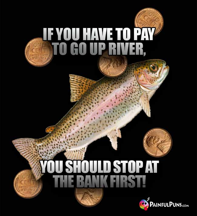 Trout Says: If you have to pay to go up river, you should stop at the bank first!
