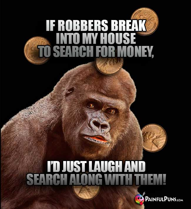 Gorilla Says: If robbers break into my house to search for money, I'd just laugh and search along with them!