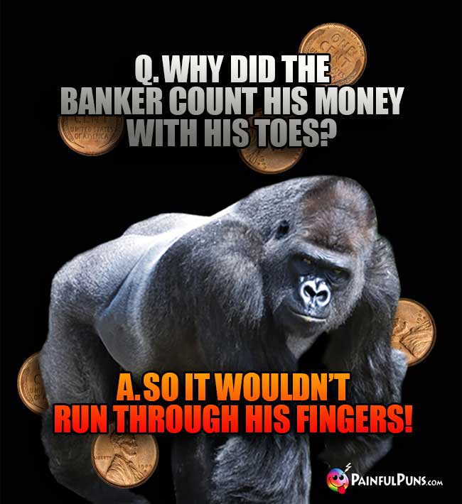 Ape Asks: Why did the banker count his money with his toes? A. So it wouldn't run through his fingers!