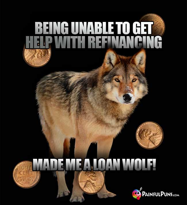 Being unable to get help with refinancing made me a loan wolf!